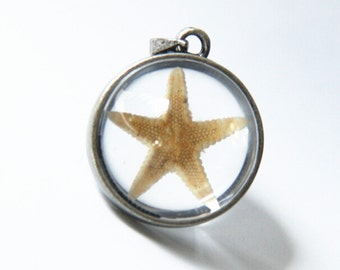 2 pcs of hand made pendant  brass setting fit with glass cabochon and real  dry star fish inside 20mm-antique silver setting