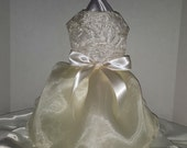 Dog Wedding Dress, Ivory Lace and Organza