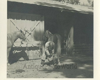 Black smith shoeing horse antique photo