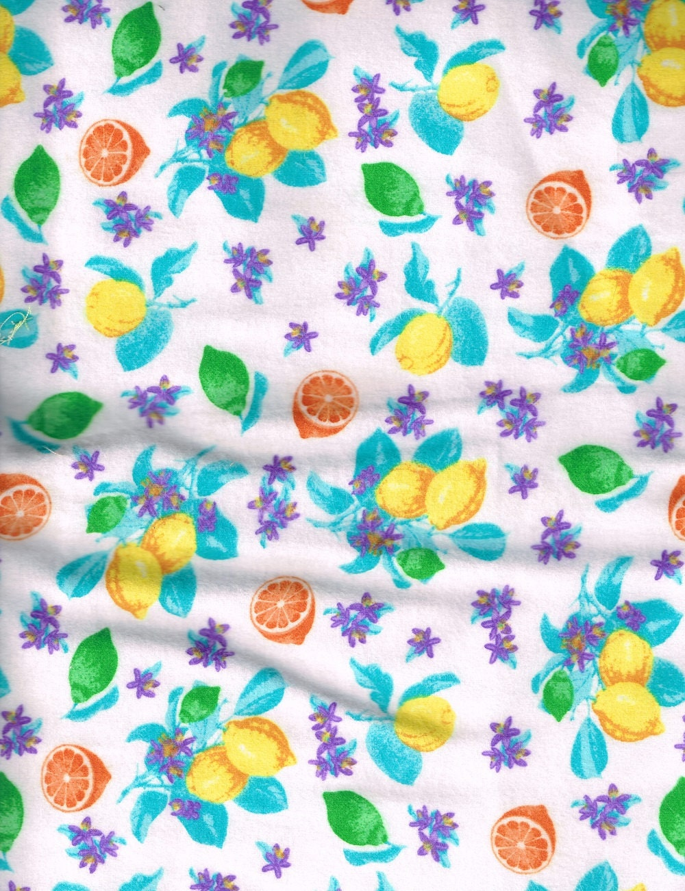 Fabric Soft Flannel Fabric Citrus Fruit Orange by ...
