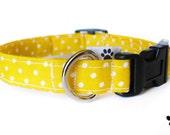 Yellow polka dots - adjustable cat and dog collar, yellow dog collar, yellow cat collar, yellow and white, polka dot cat collar