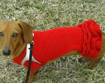 Dachshund dog clothes, small dog clothes, hand knitted  dog dress in red with frills