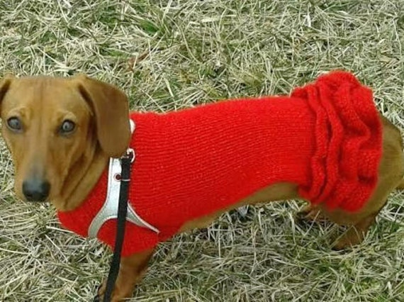 Dachshund Dog Clothes Hand Knitted Dog Dress In Red With