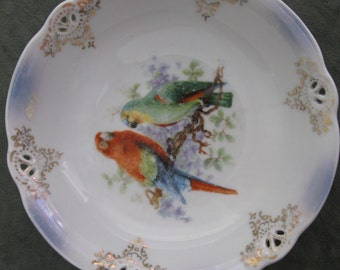 Parrot Transferware Bowl - Germany