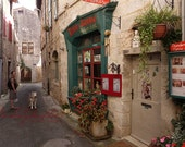 Walking the dog, Malamute explores St. Antonin de-Noble-Val France - Mid Pyrennes, Francophile Art, French home decor