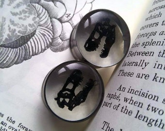 Dinosaur Plugs for PAIR T-Rex skulls! Size 10mm and above