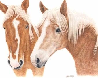 8x10 Print - Horse Art Print - Wildlife art print of a horse drawing - Horse Drawing Print - Fine art Print - 8x10