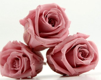 Preserved Pink Roses, Roses for Bouquet, Rose Bouquet, Preserved Rose Bouquet  Simply Beautiful !