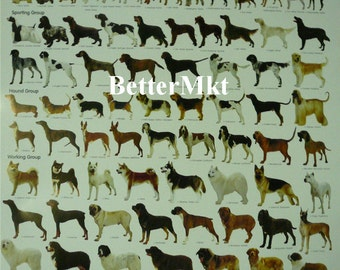 Ultimate Dog Breeds Educational Wall Chart Poster