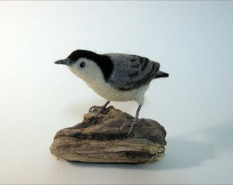 White-breasted Nuthatch  Needle felted bird - Made to order
