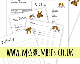 Bunny Rabbit and Guinea Pig Health Care Planner Inserts {PERSONAL}