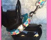 """Martingale Style 1"""" Quick Release Metal Buckle Collar & Leash SET Jelly Beans. Fits 11.5""""-17.5"""" Leash 6ft."""