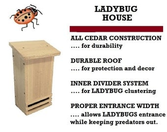 Ark Workshop Ladybug House cedar shelter box for lady bugs and garden insect aphid control