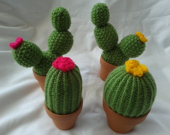 Cactus pin cushion/ Earring tidy/Mothers Day gift /sewing aid / Gardeners gift / birthday gift