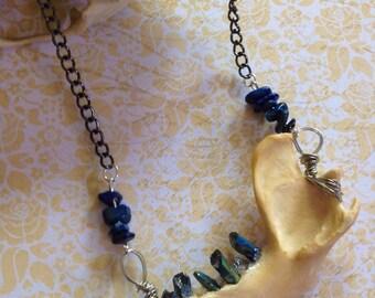 Raccoon Jaw Bone and Crystal Teeth Necklace