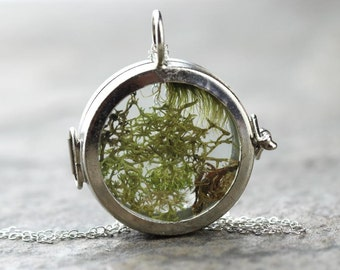 Terrarium Necklace Glass Locket Pendant Moss Necklace Sterling Silver Chain