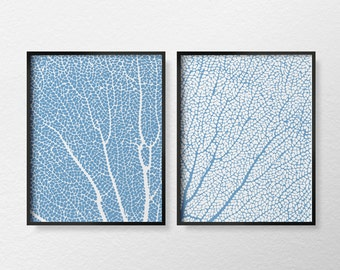 Coral Print, Coral Art, Sea Coral Print, Beach Decor, Coastal Decor, Coral Sea Fan, Bathroom Decor, Nautical Decor, Blue Coral Art, 0386