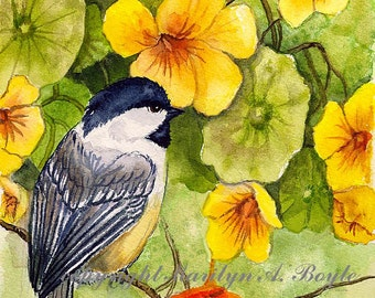 ACEO- LIMITED EDITION Print: run of 5, chickadee, garden, flowers, nasturtiums, 2.50 x 3.50 inches, nature, song bird,