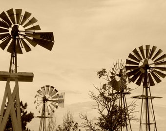 Limon Windmills in Sepia