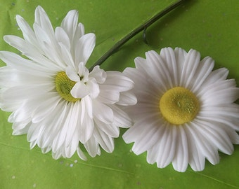 Daisy and Daisy Soap - set of 2 soaps