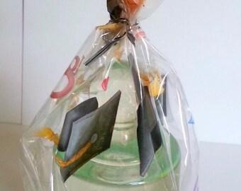 Graduation Party Favor Treat Bags, Graduation Party Cello Treat Bags, Graduation Bags