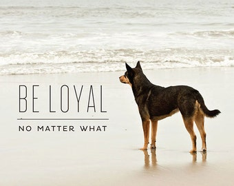 Lessons From the Water Bowl - Volume 1 - Prints - Be Loyal