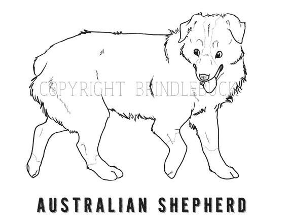 Australian Shepherd Coloring Pages