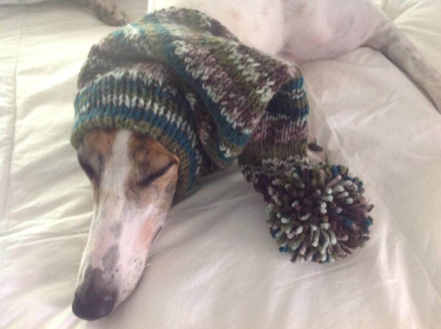 Pointed hat with snood for greyhound fair isle pattern capri breeze gallery photo gallery photo gallery photo gallery photo bankloansurffo Images