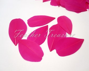 Hot pink trimmed goose feathers, feather petals, fuchsia feathers, hot pink goose feathers, flower petals, embllishment,millinery feathers
