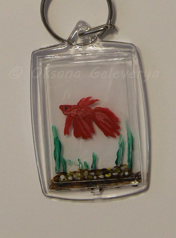 Betta fish tank on key 3d painting of tiny fish within for Fish tank paint