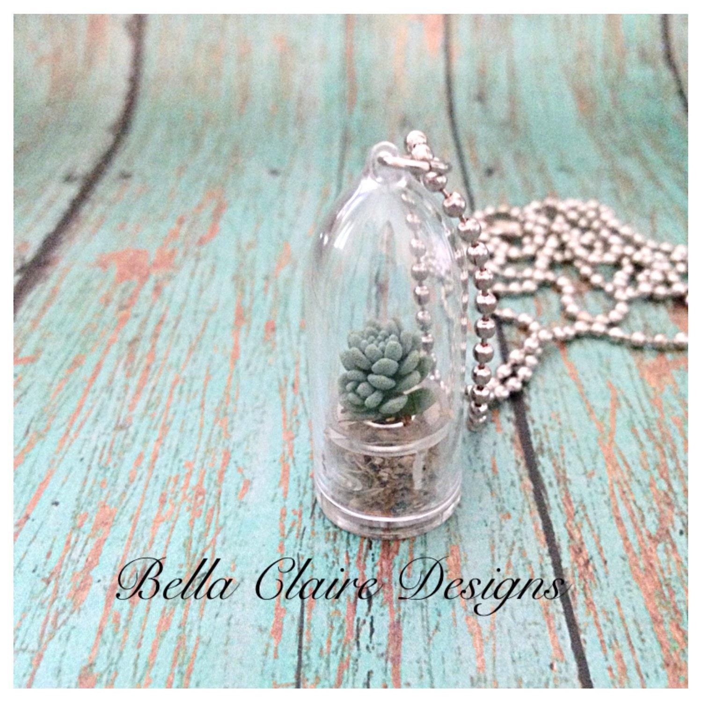 real terrarium necklace live plant necklace air plant necklace
