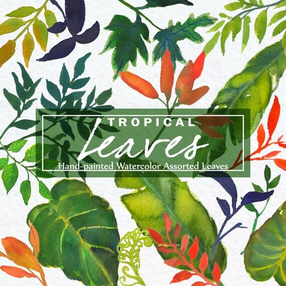 Watercolour Tropical Leaves Clipart. Handmade, watercolour clipart, wedding diy elements, leaves - Tropical Leaves