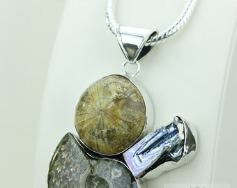 Sand Dollar Fossil Bismuth Crystal Ammonite 925 S0LID Sterling Silver Pendant + 4MM Snake Chain & FREE Worldwide Express Shipping MP178