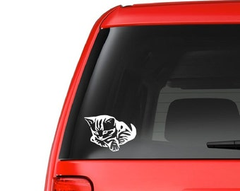 Kitten (A19) Vinyl Decal Sticker Car/Truck Laptop/Netbook Window