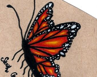 Original Orange Butterfly Drawing