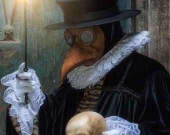 Plague Doctor's mask Maximus in leather