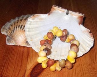 Winkle Shell Bracelet