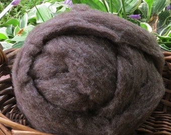 Babydoll Southdown Roving - Brown - Various Amounts