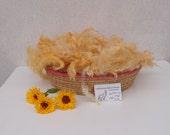 Yellow Premium Huacaya Alpaca Fleece,  Hand Dyed Fiber for Spinning and Felting, fluffy wool basket filler photography prop