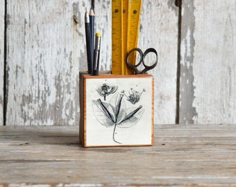 Botanical Desk Caddy Small: No. 3, Fig. 4 - Desk Organizer, Office Desk Accessories, Pencil Holder, Tool Caddy, Utensil Caddy, Peg and Awl