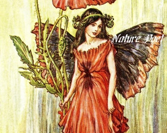 Poppy Fairy by Mary Cicely Barker  Reproduction Art, Downloadable, Printable, Digital Art Image.Instant Download