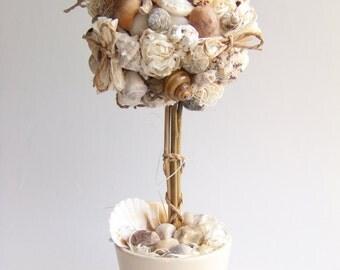 Topiary Tree - Home Decor - Seashells