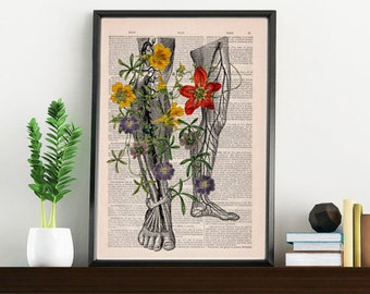 Summer Sale Human anatomy art, Wild flowers on my legs .Art  Print Gift Print wall art wall decor Wall Hanging poster SKA096