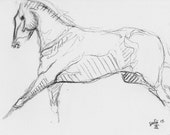 Original Sketch 261 of a Race Horse