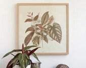 SALE -35 Leaves & Plants composition - botanic art illustration Poster  LPC50502