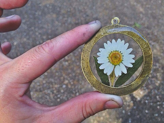 Genuine White Daisy Preserved in Clear Casting Resin, Enclosed in Antique Bronze Large Round Frame Pendant, Choice of necklace chain length.