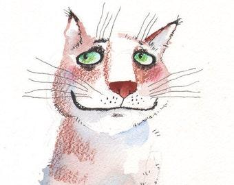The so tender cat