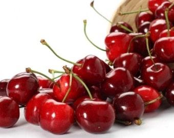 Cherry Berry Bling Moisturizing Conditioner
