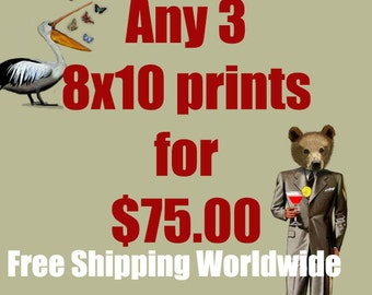 Any 3 8X10 prints for 75.00Dollars - FREE WORLDWIDE Shipping