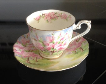 Royal Albert Blossom Time Hampton Tea Cup and Saucer